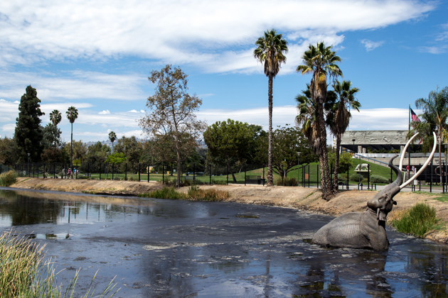 Venture out to the Hancock Park to watch the bubbling tar pits