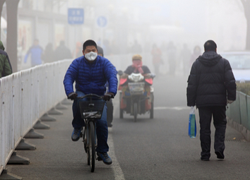 Effects of Polluted Air