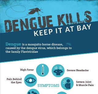 Dengue Kills Keep it Bay
