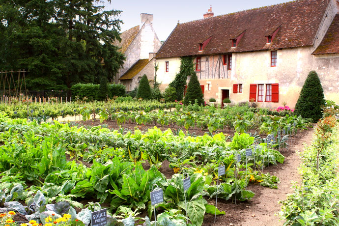 a-well-cultivated-kitchen-garden